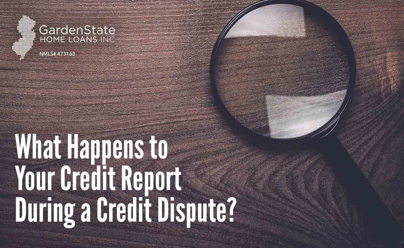 credit report dispute