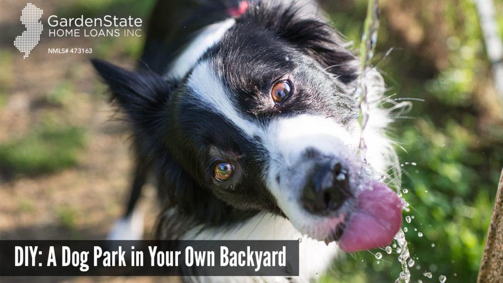 DIY dog park