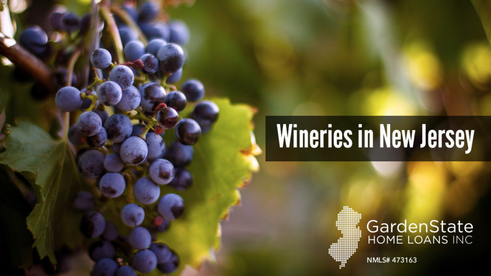Wineries in New Jersey, 7 Great Wineries in New Jersey