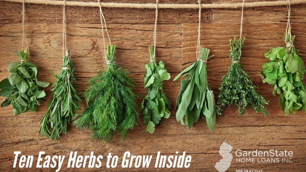 , Ten Easy Herbs to Grow Inside